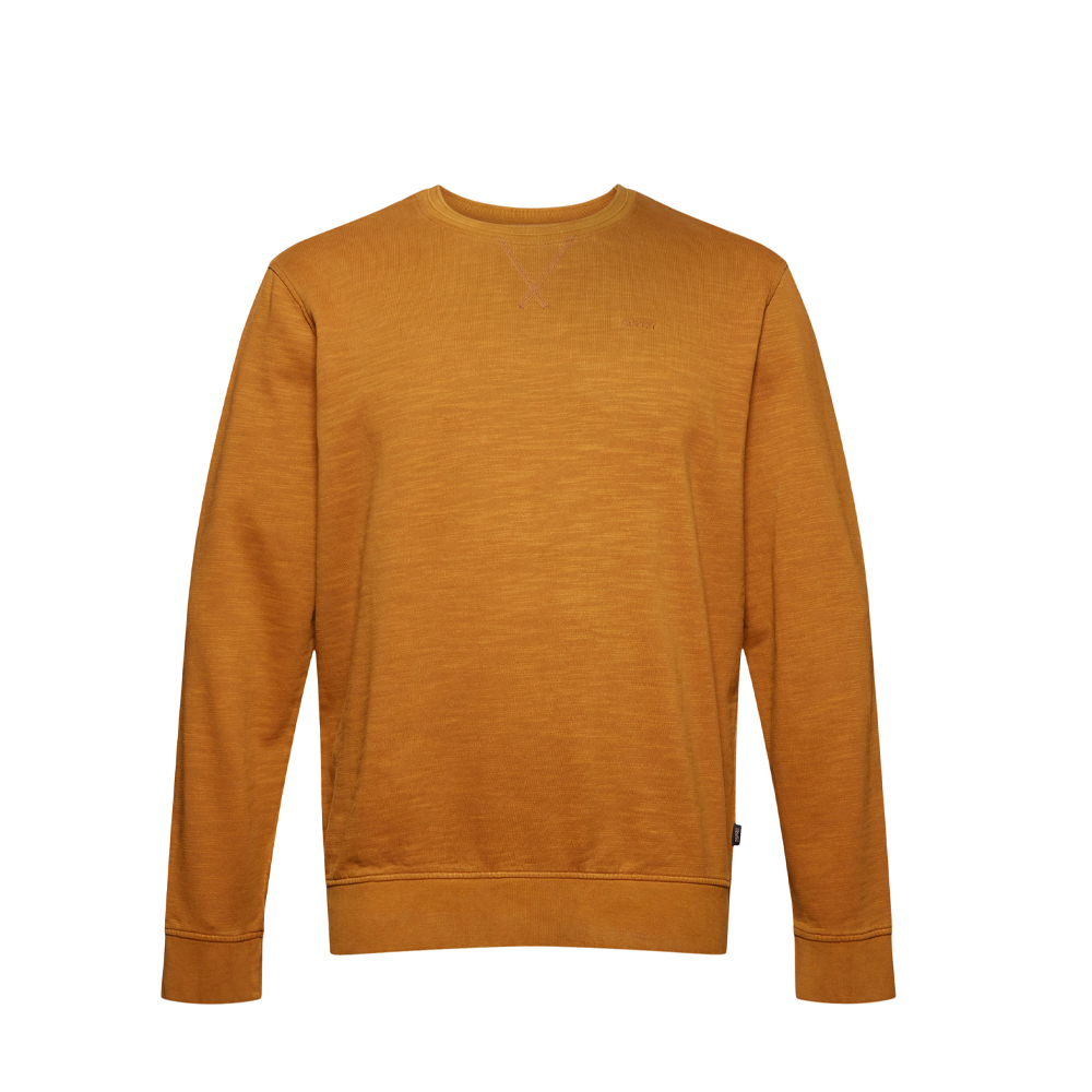 Esprit Sweatshirt made of 100% organic cotton